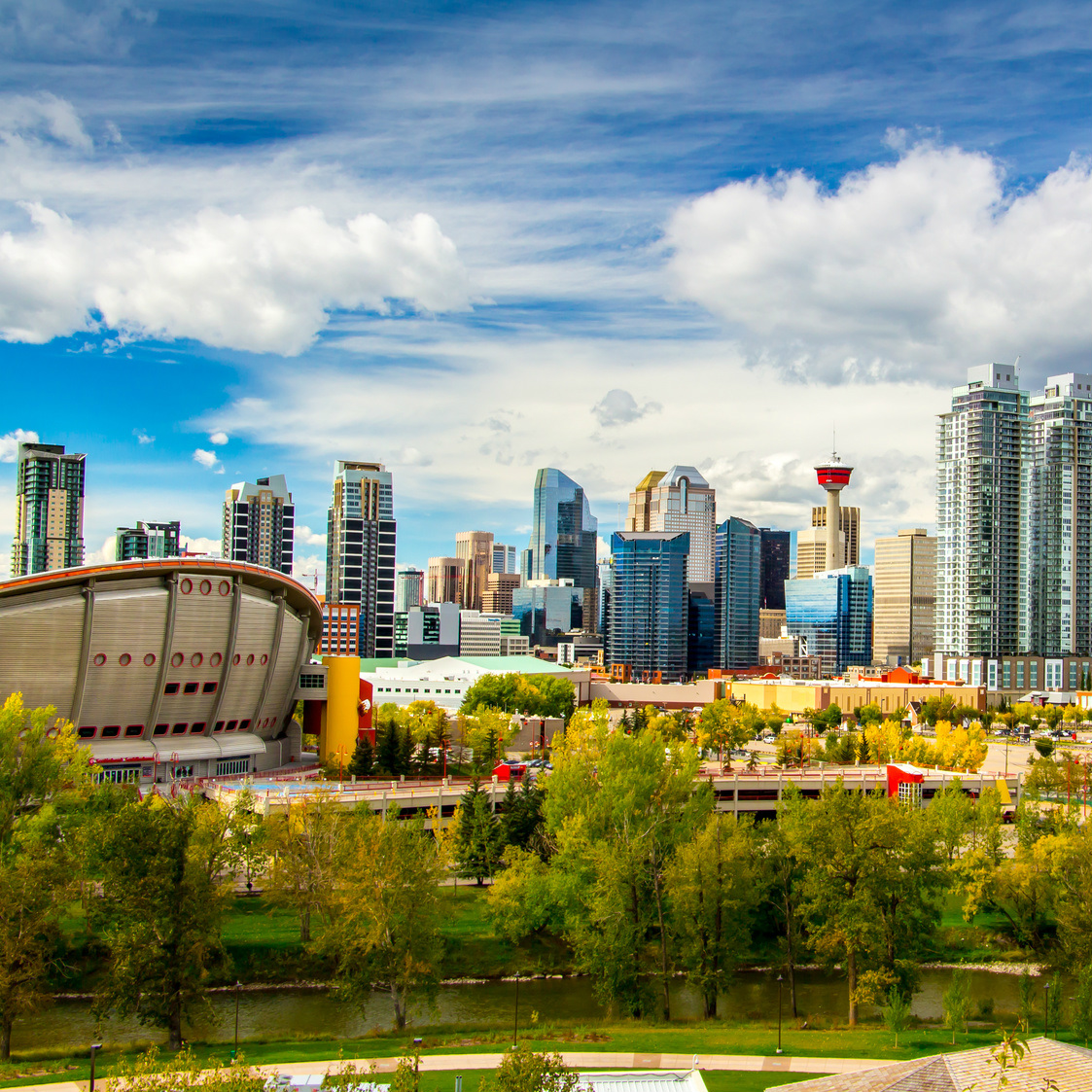 Calgary stad